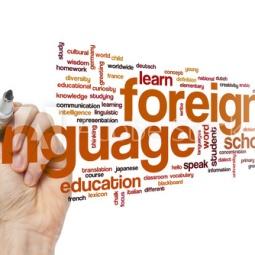 foriegn language